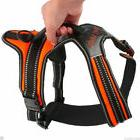 Heavy Duty-Padded Pet Dog Harness XL Large Medium Small Stra