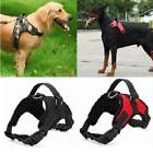 No Pull Adjustable Dog Pet Vest Harness Quality Nylon Small/